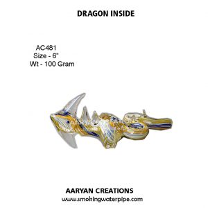 AC481 DRAGON INSIDE